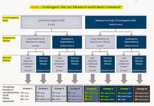Criminogenic Risk